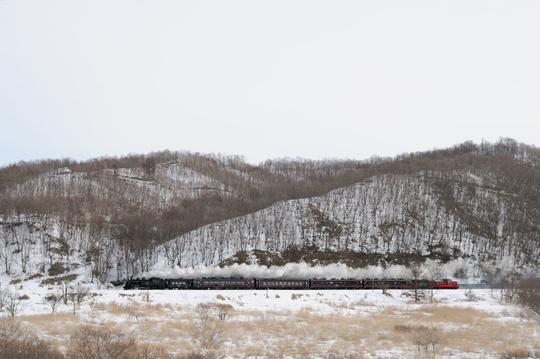 2012 SL冬の湿原号 岩保木