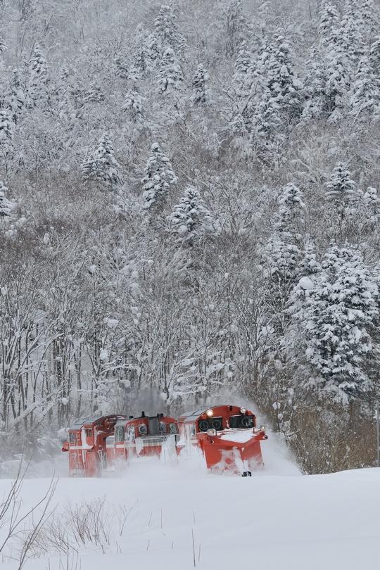 雪372レ 筬島-音威子府