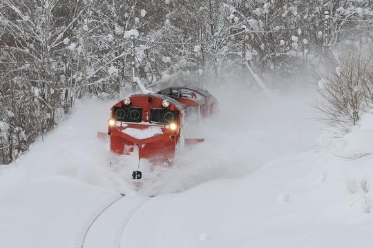 雪372レ 北星-日進 1